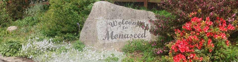 MonaseedHeader2
